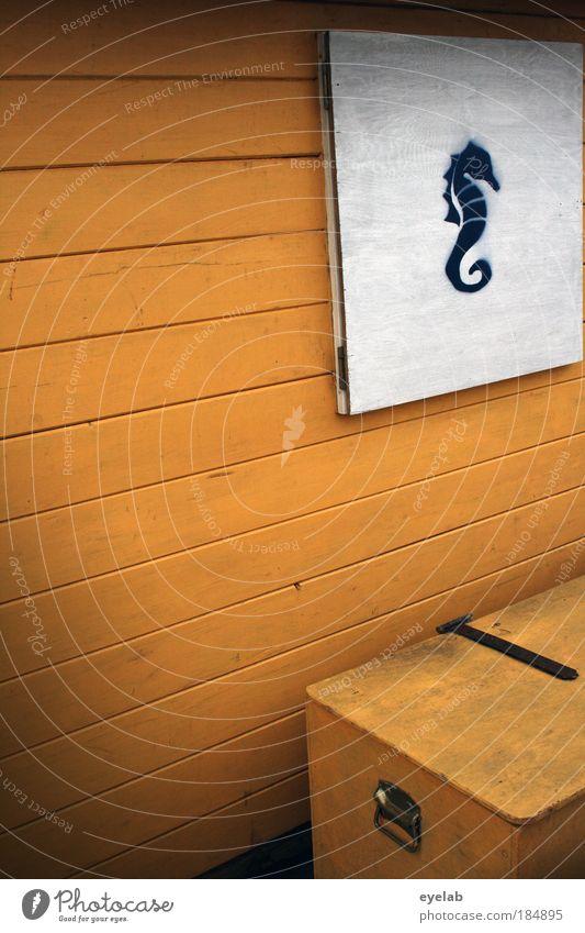Pferdestall Wasser weiß schön Meer Strand Tier Haus gelb Wand Holz Küste Gebäude Mauer Kunst Fassade Design