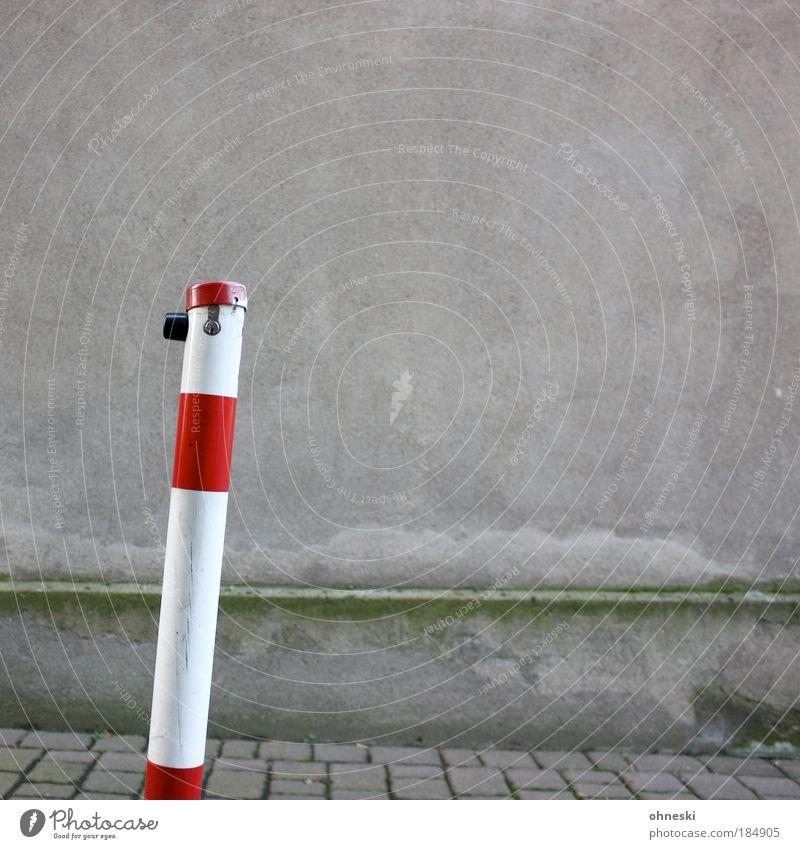 Pfeiler weiß Pflanze rot Haus Wand grau Mauer Gebäude Architektur Fassade trist Bauwerk Moos Straße Pflastersteine
