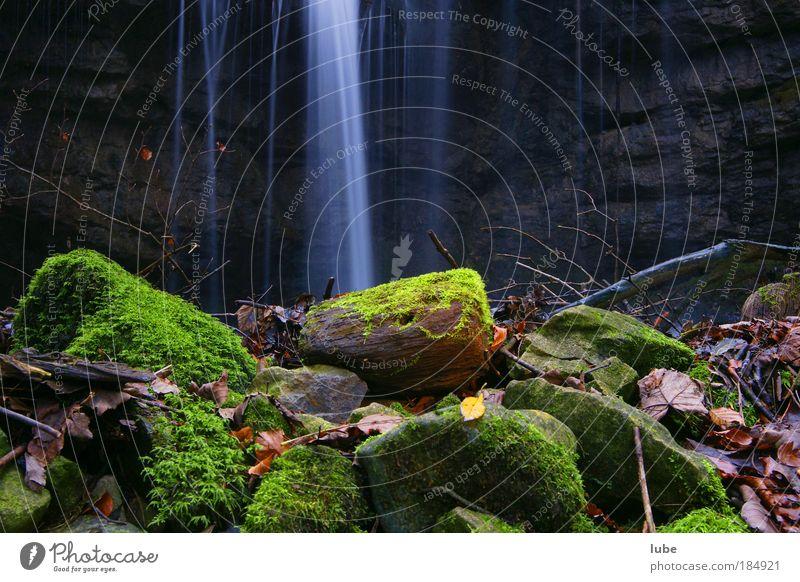 Waldbach Außenaufnahme Langzeitbelichtung Weitwinkel harmonisch Natur Landschaft Wasser Wassertropfen Herbst Klimawandel Regen Moos Bach Fluss Wasserfall