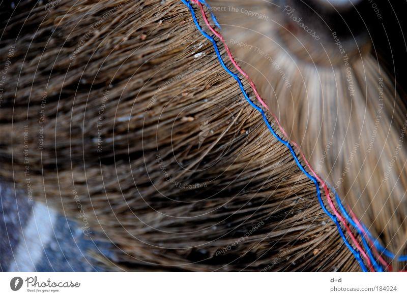//// Kehren Besen Stroh blau-rot Reinigen Sauberkeit Gartenarbeit Naht dreckig alt verwittert Farbfoto Detailaufnahme Fliesen u. Kacheln Fuge Schnur