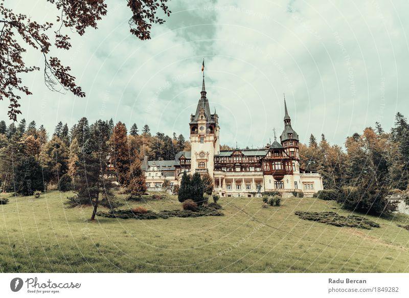 Himmel Natur Ferien & Urlaub & Reisen blau Farbe Stadt grün schön Baum Landschaft Wolken Wald Umwelt Architektur Gras Stil