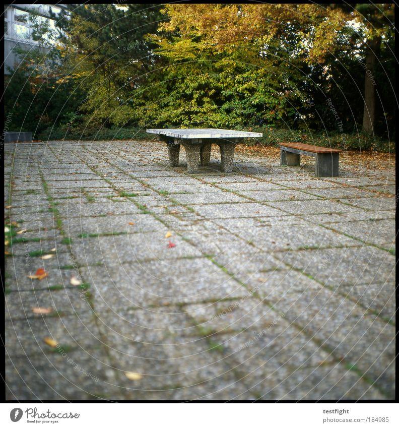 randsportart Freizeit & Hobby Spielen Schule Schulgebäude Schulhof Terrasse Einsamkeit vergessen alt solide Bank Tischtennisplatte Herbst Blatt Baum Farbfoto