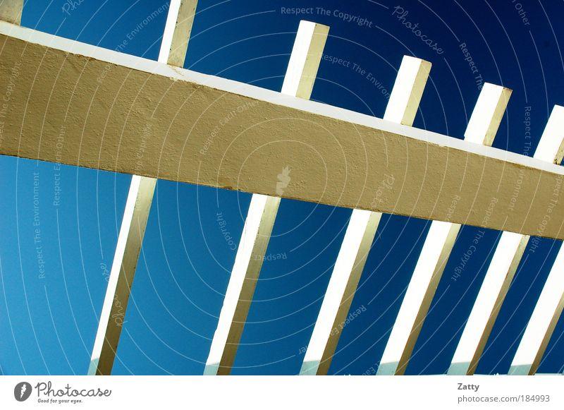 Himmelsleiter weiß blau Sommer Ferne Farbe kalt Stil Holz Beton Dach Häusliches Leben Sehnsucht Weltall Leiter Schönes Wetter