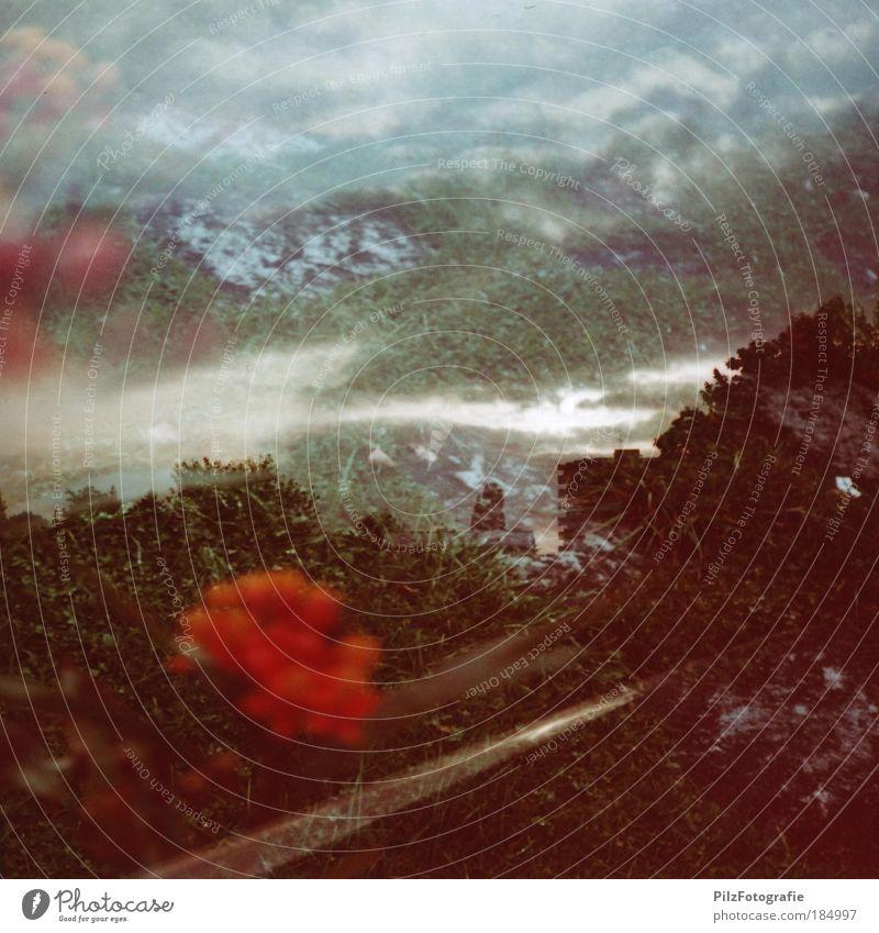 Dimensionen Natur grün Pflanze rot Einsamkeit Wiese Tod Traurigkeit Wege & Pfade Landschaft Stimmung Umwelt Felsen Wachstum Alpen Unendlichkeit