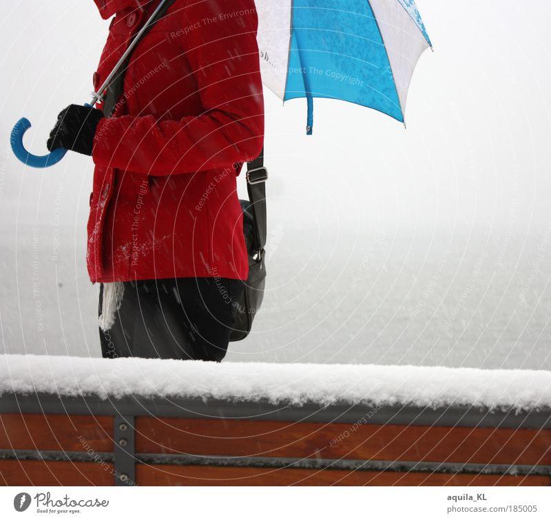 rot, blau, weiß Wasser Schnee Schneefall elegant laufen Bank Regenschirm Hose Jacke Seeufer Tasche Mantel Handschuhe Schneeflocke Nebelschleier