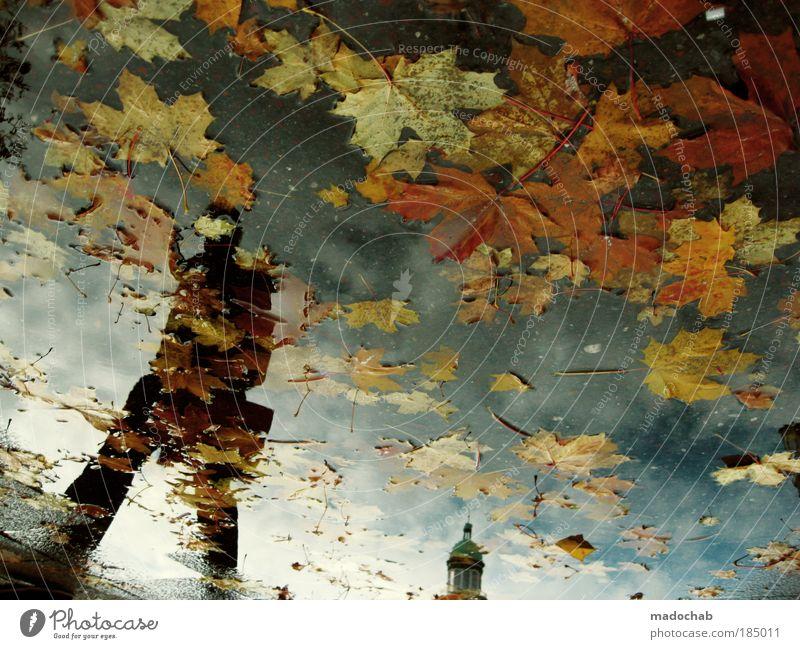 DEPRESSION & MELANCHOLIE Mensch Mann Natur Wasser Stadt Ferien & Urlaub & Reisen Erwachsene Herbst Leben Umwelt Traurigkeit träumen Wetter Klima Hoffnung Muster