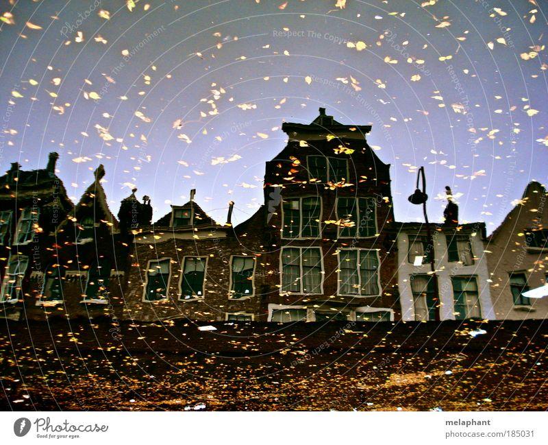 Glitzer draufschütten. Wasser alt Blatt Haus Herbst Wand Fenster Mauer braun Kunst Architektur glänzend Umwelt gold Fluss