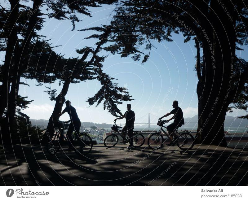 Justus Jonas, Peter Shaw, Bob Andrews Natur Freude Wald Erholung Fahrrad Ausflug fahren USA Ferien & Urlaub & Reisen entdecken Zusammenhalt Amerika Sightseeing