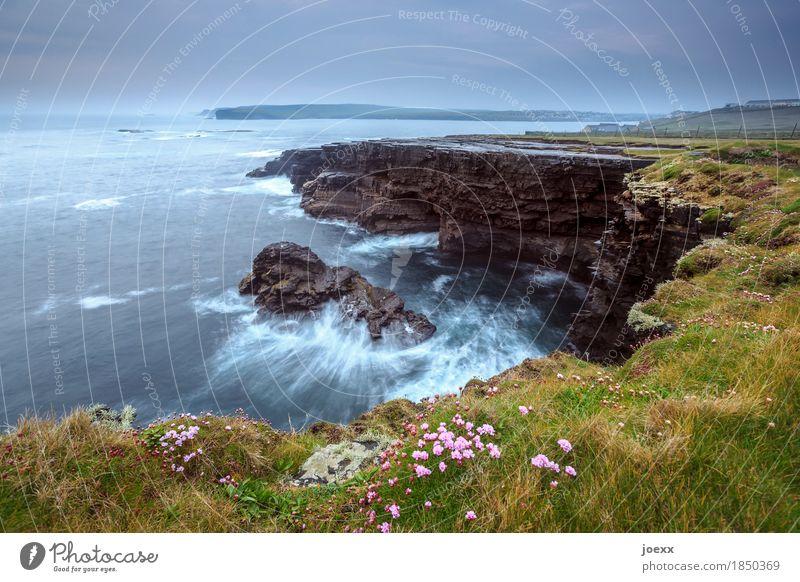 Zwischen innen und außen Landschaft Himmel Wolken Horizont Wetter schlechtes Wetter Wiese Felsen Wellen Küste Meer Insel Republik Irland maritim schön blau