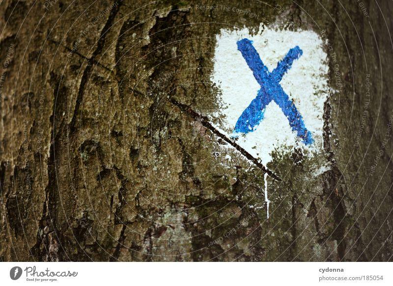 Programm schließen Umwelt Natur Baum Zeichen Schilder & Markierungen ästhetisch Bildung Ende entdecken geheimnisvoll Idee Kommunizieren Leben