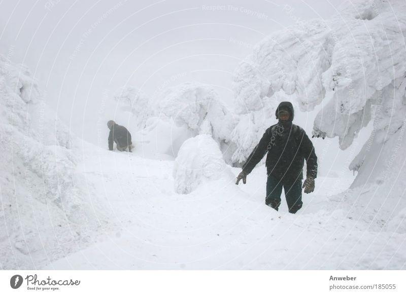Da hat's uns Frau Holle wohl richtig besorgt.... Mann Natur weiß Winter Ferien & Urlaub & Reisen Schnee Berge u. Gebirge Mensch Freiheit Schneefall Landschaft Erwachsene Sturm wandern maskulin Umwelt