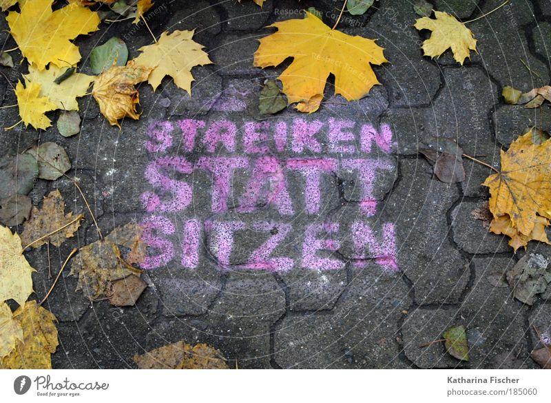 STREIKEN STATT SITZEN Stadt Blatt gelb Straße Herbst grau Stein Wege & Pfade Graffiti braun Beton Kunst Macht Mut Zusammenhalt Demonstration
