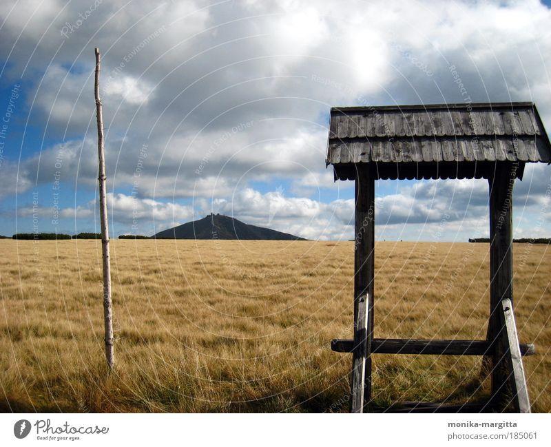 Weitsicht Natur Himmel Pflanze Ferien & Urlaub & Reisen Wolken Erholung Herbst Gras Berge u. Gebirge Landschaft Stimmung Horizont Erde Ausflug Gipfel entdecken