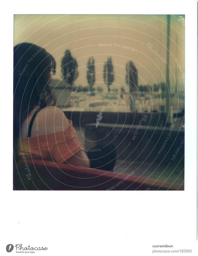 zypressen im hintergrund. Frau Wasser ruhig Einsamkeit Polaroid Zufriedenheit Bank Schweiz Hafen Sitzgelegenheit Möbel