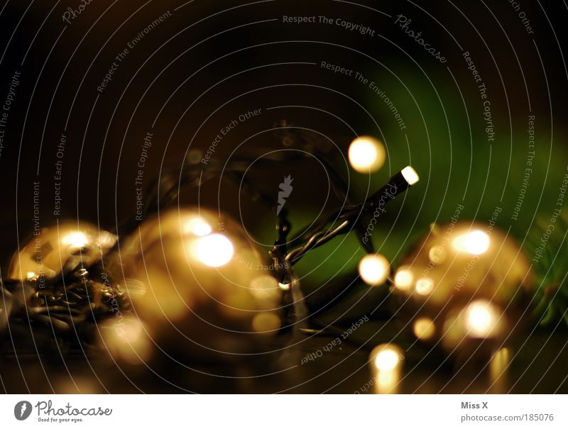 Weihnachtsrausch Weihnachten & Advent Baum Pflanze Winter dunkel Stil hell Stimmung Feste & Feiern gold elegant glänzend Elektrizität Dekoration & Verzierung leuchten Kugel