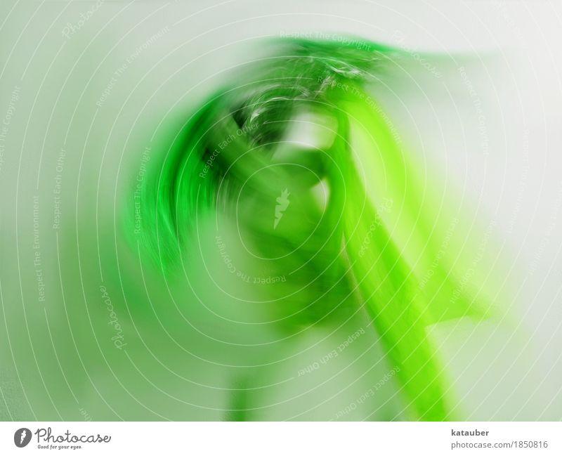 dance of hope Tanzen Bewegung kämpfen träumen ästhetisch sportlich Unendlichkeit stark grün silber Kraft Leben Hoffnung Tuch Körper Farbfoto Experiment abstrakt