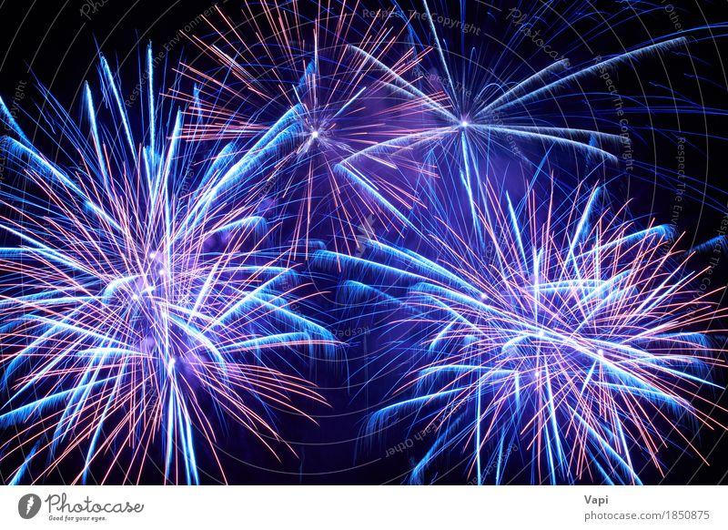 Blaue bunte Feuerwerke auf dem schwarzen Himmel blau Weihnachten & Advent Farbe weiß rot Freude dunkel Kunst Freiheit Feste & Feiern Party rosa hell violett