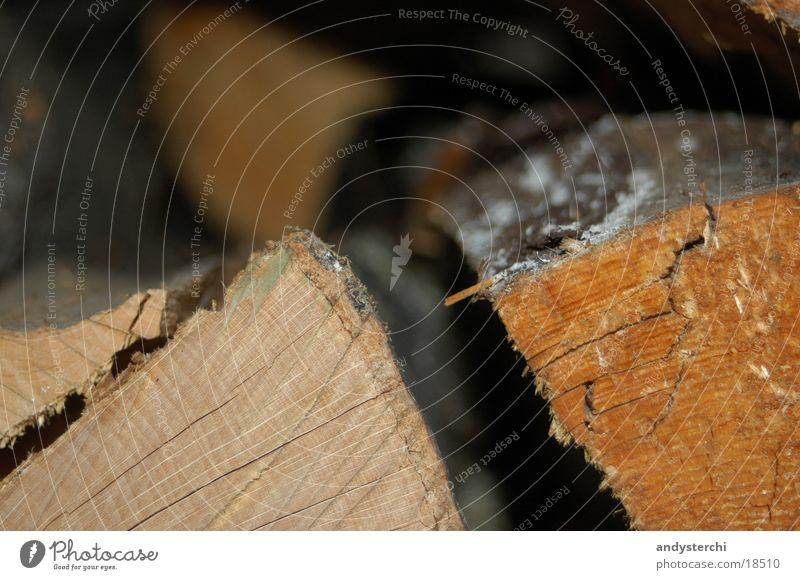 Feuerholz Baum Holz brennen Baumrinde Brennholz Totholz Holzmehl Jahresringe