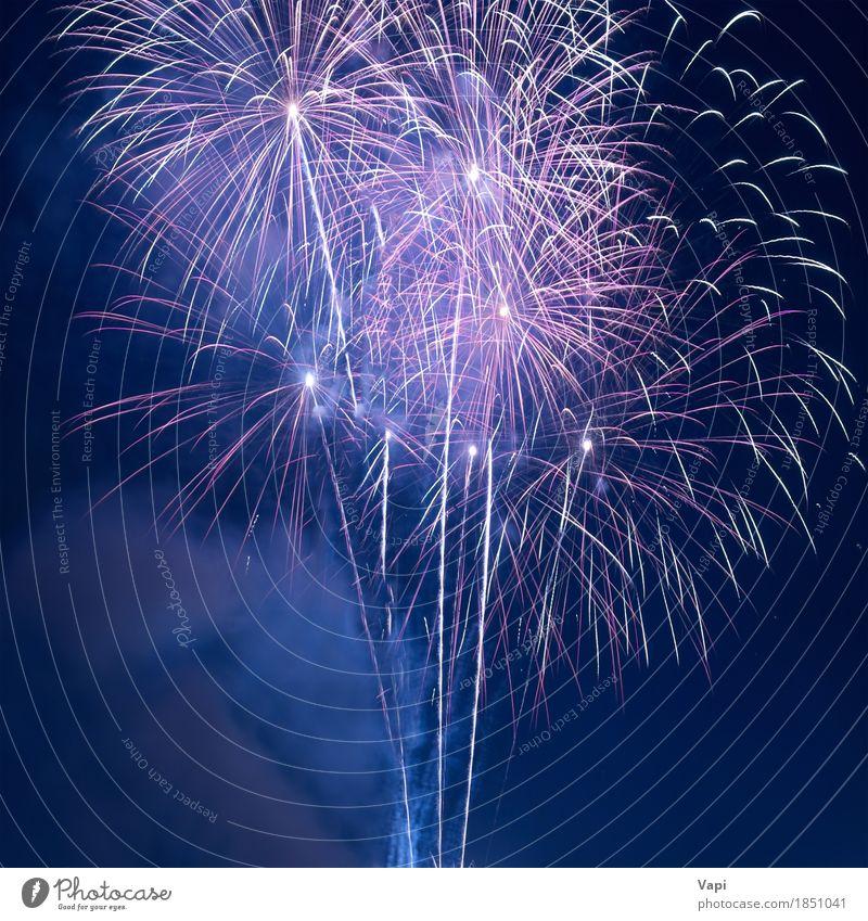 Buntes Feuerwerk am schwarzen Himmel Design Freude Freiheit Nachtleben Entertainment Party Veranstaltung Feste & Feiern Weihnachten & Advent