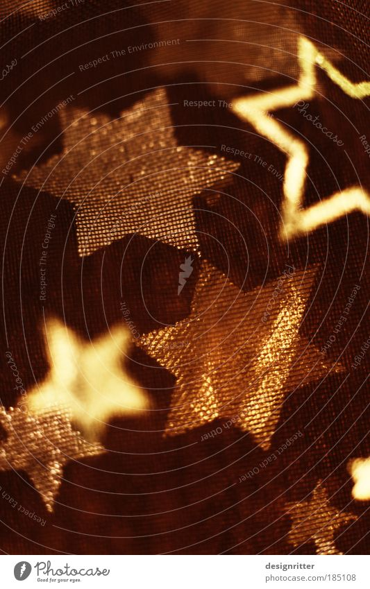 Sternhagel Weihnachten & Advent schön ruhig Freude Wärme Design Zufriedenheit Dekoration & Verzierung gold Fröhlichkeit Lebensfreude Warmherzigkeit