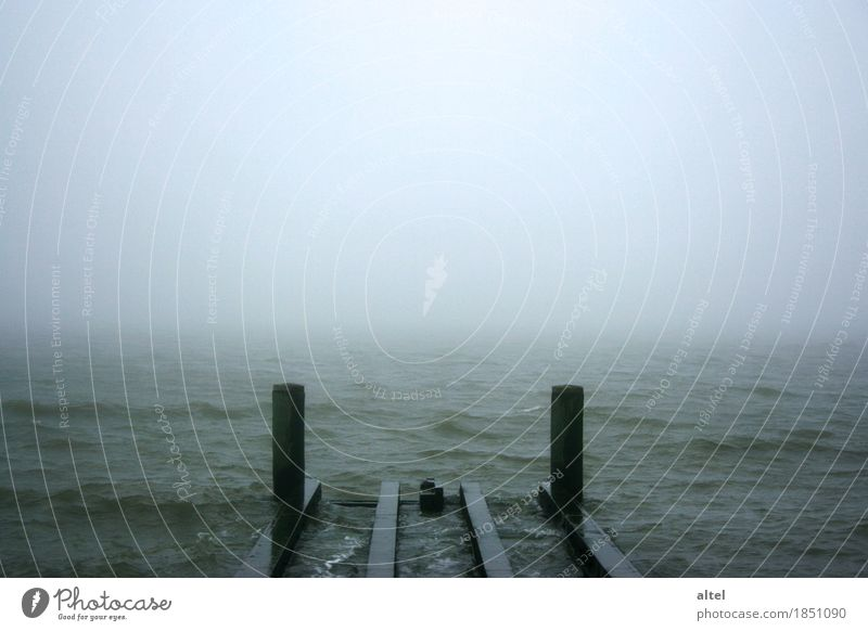 Der blanke Hans Natur Ferien & Urlaub & Reisen Wasser Meer Landschaft Einsamkeit Wolken ruhig dunkel Traurigkeit Herbst Küste Stimmung Horizont träumen Nebel