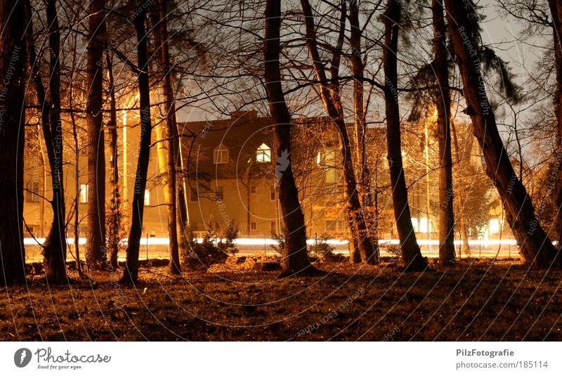 Zauberwald Natur Baum rot Haus schwarz gelb Straße Farbe Wald Wiese Garten PKW Park orange Straßenverkehr Umwelt