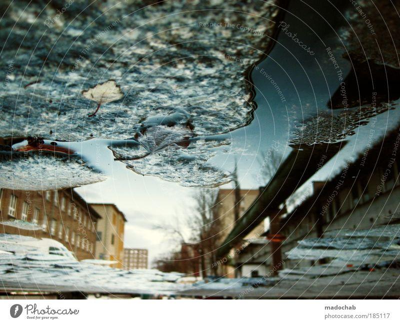 BREAKING THE FRAME Wasser Unterwasseraufnahme abstrakt Herbst Angst Wetter Experiment Umwelt Perspektive Klima Reflexion & Spiegelung Unwetter skurril