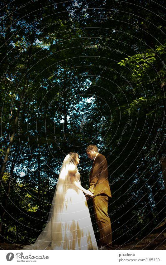 Ja, ich will ! Mensch Jugendliche Wald Gefühle Paar Zusammensein Erwachsene Sicherheit Romantik Vertrauen Partnerschaft Geborgenheit Zusammenhalt Treue Schleier Brautkleid