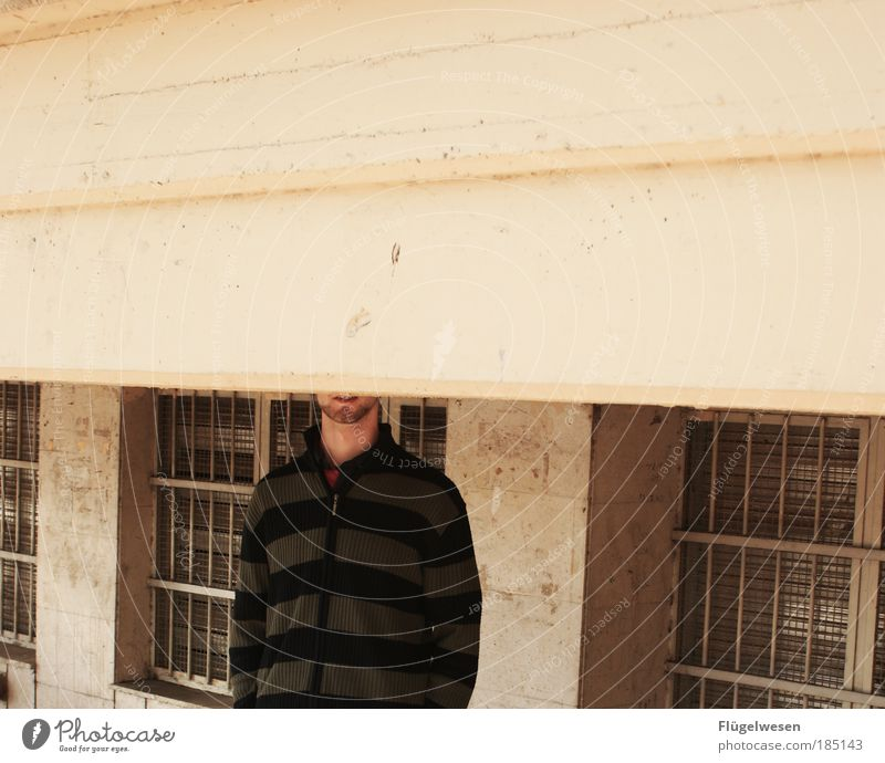 Eingemauert Mensch Arbeit & Erwerbstätigkeit Fenster Mauer Angst Kunst dreckig Wohnung Beton Lifestyle gefährlich kaputt Baustelle Freizeit & Hobby Häusliches Leben fangen