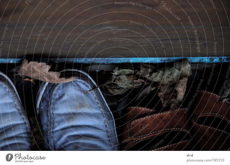 mm alt Blatt Herbst Holz Schuhe braun Wetter Falte schäbig Terrasse Turnschuh Herbstlaub Naht Sandale Hausschuhe verwittert