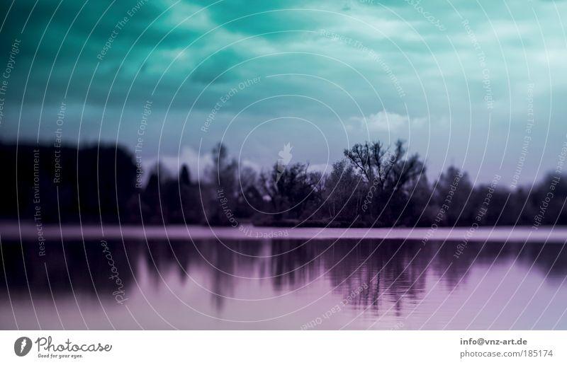 GrünLilaLandschaft Natur Wasser Himmel Baum Pflanze See Stimmung Wetter Umwelt Fluss bedrohlich Seeufer Teich Flussufer