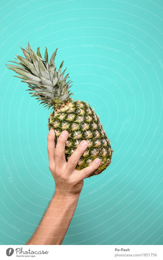 ANANUSS Lebensmittel Frucht Ananas Ernährung Bioprodukte Vegetarische Ernährung Diät Fasten Saft Lifestyle kaufen Stil Design Gesundheit Alternativmedizin