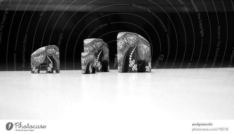 Elefanten Dinge Tier Rüssel Muster Holz dickhäuter Schwarzweißfoto Bodenbelag Wildtier sr lanka schnitz