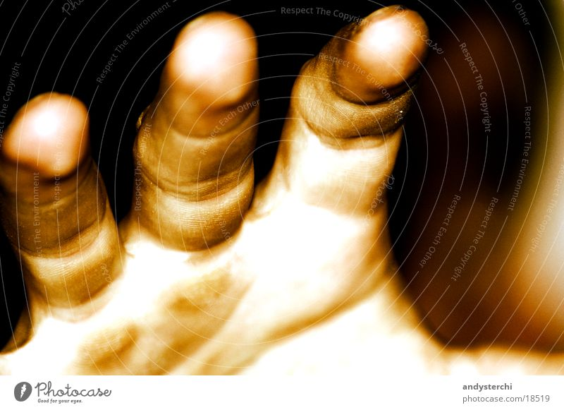 Kralle Hand Finger Jahresringe Mensch Falte Haut fangen Sepia Abdruck Fingerabdruck