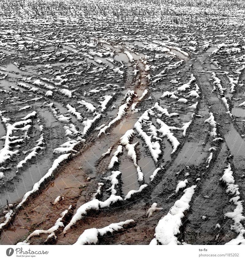Spuren Winter Einsamkeit Schnee Herbst Landschaft Feld Wetter Erde Langeweile schlechtes Wetter abstrakt schlammig