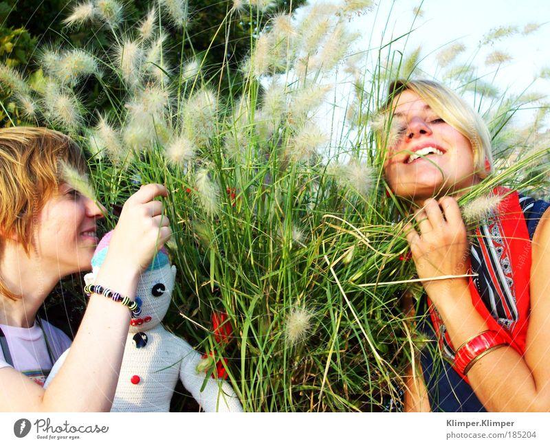 Red Blondehead Mensch Natur Jugendliche Pflanze Sommer Ferien & Urlaub & Reisen Geruch feminin Spielen Blüte Gras Glück Freundschaft Zufriedenheit blond