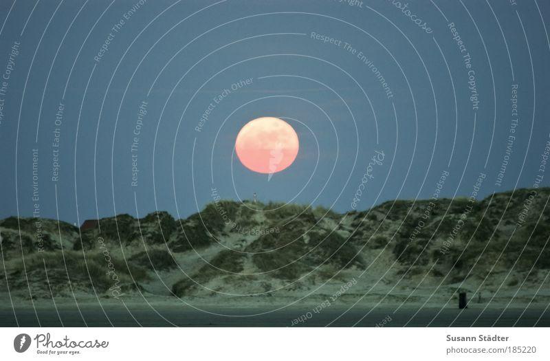Gute Nacht Römö! Sommer Strand Gras Planet hell Küste Umwelt Erde Nachthimmel Hügel leuchten Mond genießen Stranddüne Urelemente
