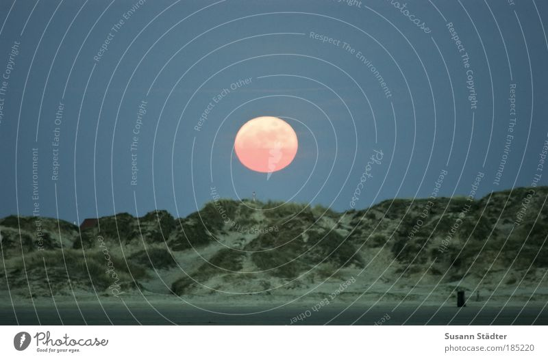 Gute Nacht Römö! Umwelt Urelemente Erde Wolkenloser Himmel Nachthimmel Mond Vollmond Hügel Küste Strand Nordsee Stranddüne genießen leuchten hell Müllbehälter