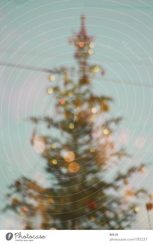 SANTA DANIEL-GIVE ME STATIVE Weihnachten & Advent blau Baum Winter Lifestyle Feste & Feiern glänzend leuchten verrückt fantastisch Warmherzigkeit Romantik