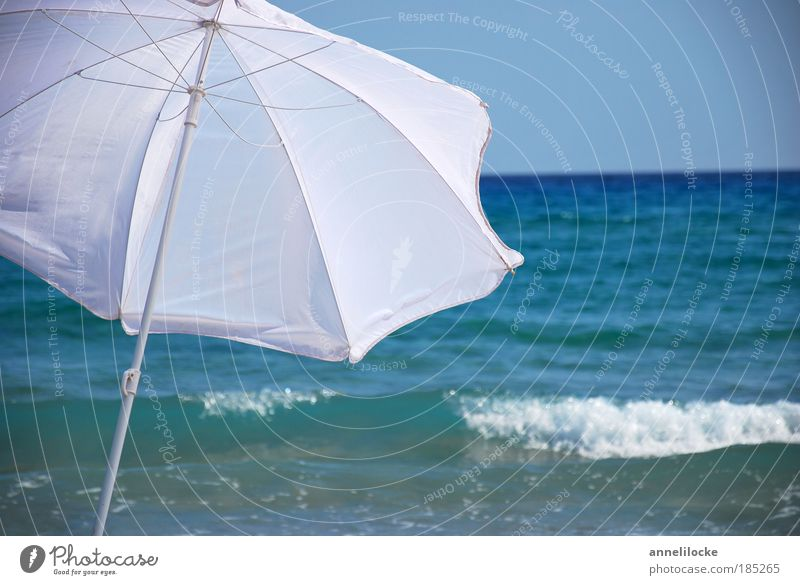 38°C Sonne Meer blau Sommer Freude Strand Ferien & Urlaub & Reisen Ferne Erholung Freiheit Glück träumen Wärme Luft Zufriedenheit Wellen