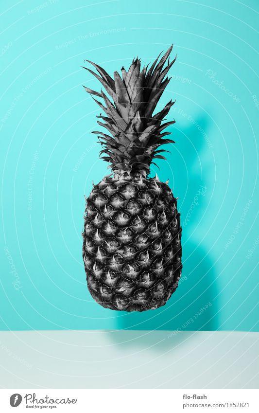 Sättigungszustand Pflanze Erotik Leben Kunst Business Lebensmittel grau Gesundheitswesen Design Frucht Ernährung süß kaufen Industrie Wellness trendy