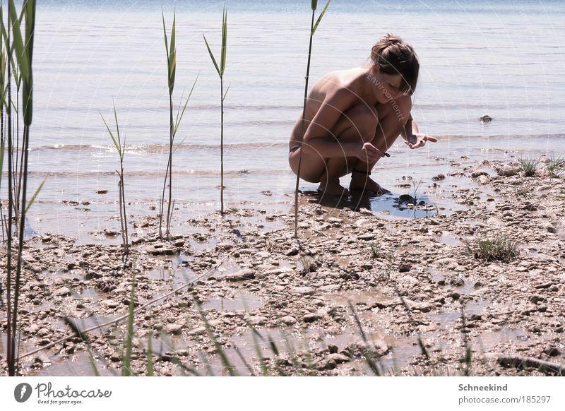 Wer suchet der findet Frau Mensch Natur Jugendliche Sonne Pflanze Sommer ruhig Erholung feminin Gras Freiheit Schatten See Landschaft