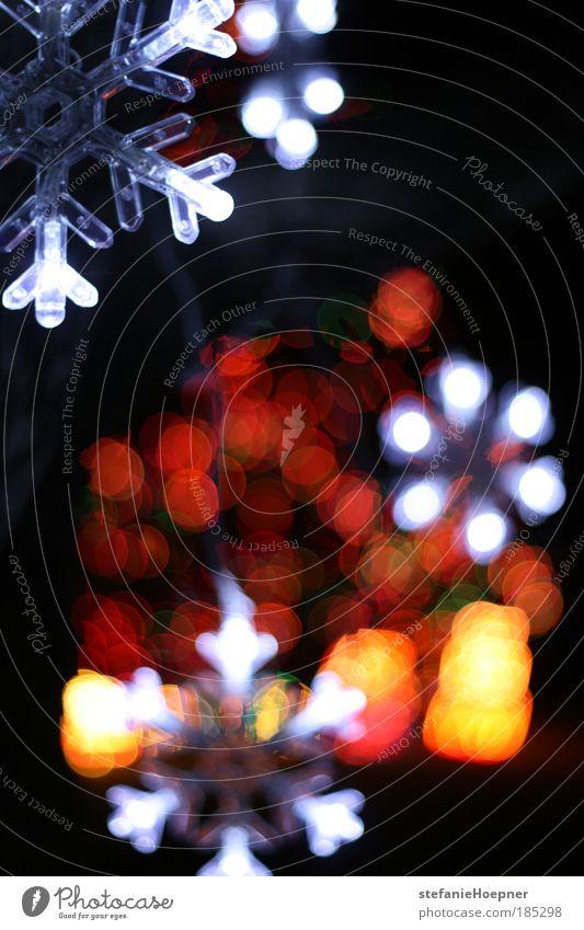 Christmas flakes Winter leuchten Lights Night Weihnachtsbeleuchtung Weihnachtsstern Weihnachtsdekoration Dekoration & Verzierung Licht Beleuchtung Schneeflocke