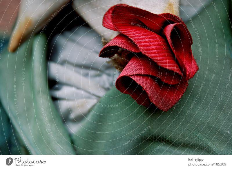 edel zartbitter rot Stil Mode elegant Design ästhetisch Lifestyle Bekleidung Stoff Jacke Hemd Schmuck Reichtum Theater Stolz
