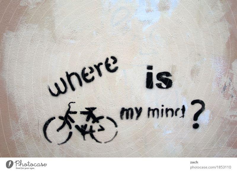 berechtigte Frage Gehirn u. Nerven Verstand Fragen Stadt Suche Fahrrad Fahrradfahren Stadtzentrum Mauer Wand Fassade Zeichen Schriftzeichen