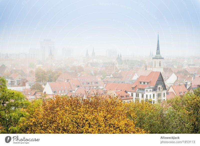 Erfurt im Nebel Herbst Stadt Stadtzentrum Altstadt Haus Kirche Gebäude gelb grün Dach Aussicht Skyline Farbfoto Außenaufnahme Menschenleer Tag Totale