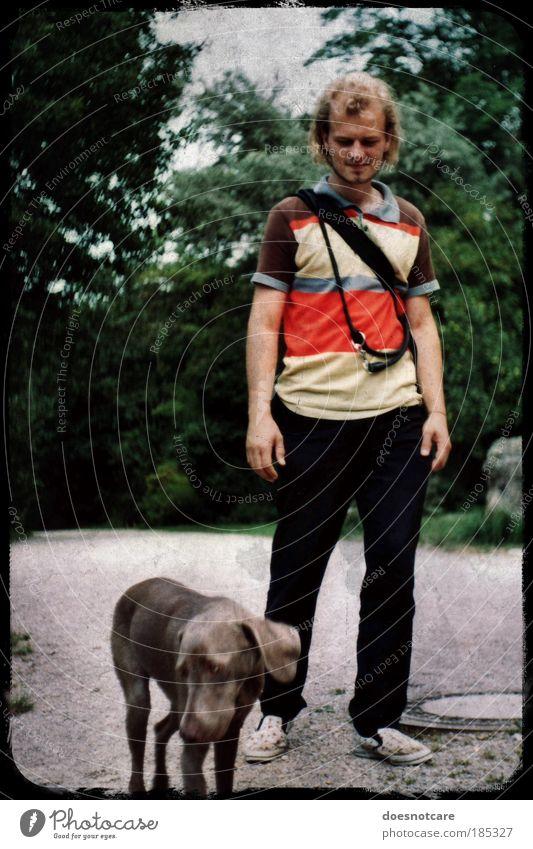 Going Walkies. Mensch Mann Jugendliche Hund Park Erwachsene maskulin Spaziergang analog Ganzkörperaufnahme Haustier Stolz gehen Jagdhund Weimaraner Kamerawurf