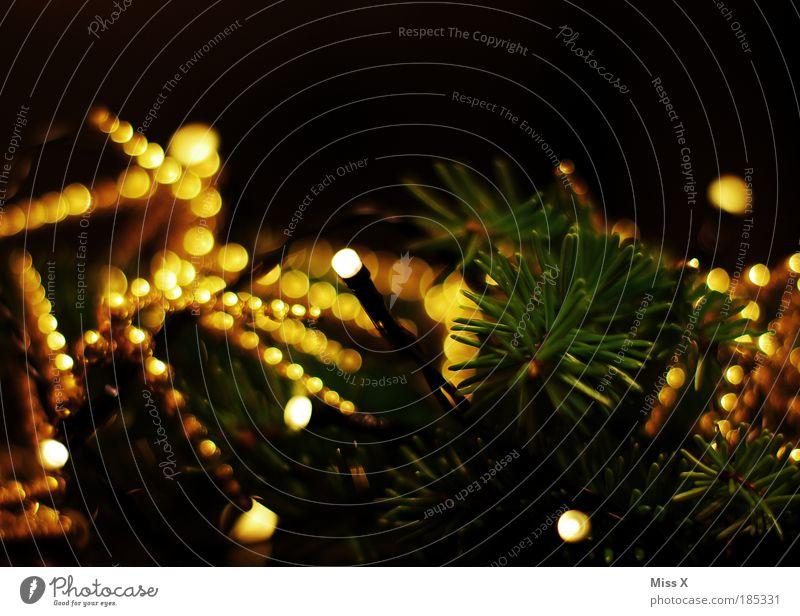 Noch ein Weihnachtsfoto elegant Stil Basteln Dekoration & Verzierung Feste & Feiern Winter Baum Blatt Ornament leuchten glänzend hell schön Wärme mehrfarbig