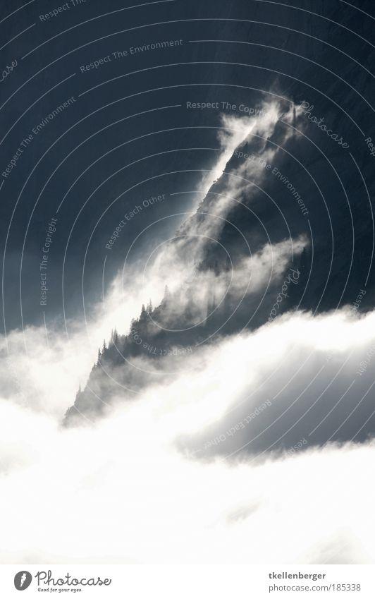 Waberung Umwelt Natur Landschaft Urelemente Luft Wasser Wolken Sommer Herbst Klima Wetter Nebel Baum Alpen Berge u. Gebirge Alpstein Schweiz Kanton Appenzell
