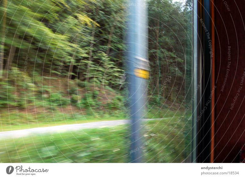 Masten Geschwindigkeit Wald Verkehr Eisenbahn sihltalbahn nach zürich Rolle Wege & Pfade